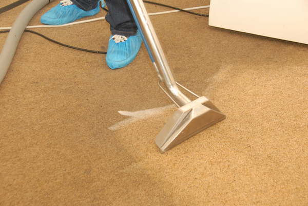 Image result for how to choose best carpet cleaning